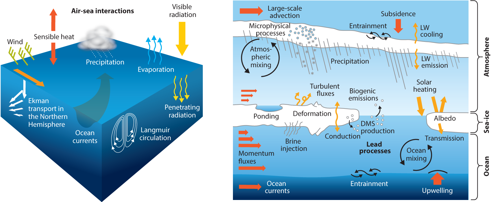 Air Sea Interactions of Natural Long Lived Greenhouse Gases