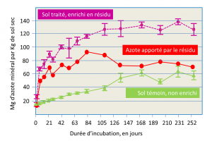 Encyclopedie environnement - nitrates sol - mineralisation azote sol apport residus pommes terre