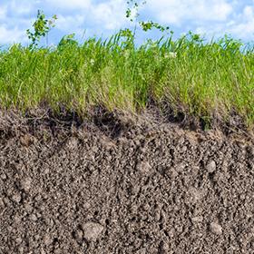 土壤 image