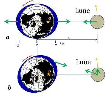 schema theory static Newton