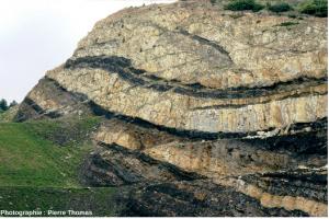 Encyclopédie environnement - biosphère - Carbonifère des Cévennes