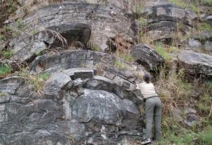 Encyclopédie environnement - l'origine de la vie - Stromatolite - morphological marker - stromatolites