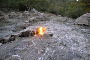 Encyclopedie environnement - origine de la vie - Chimere