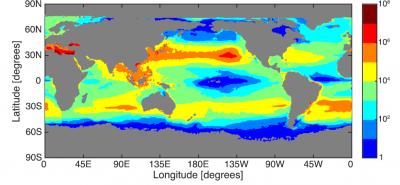 环境百科全书-塑料污染-海洋污染