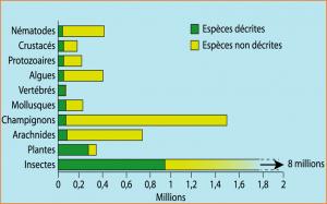 Encyclopédie environnement - biodiversité - nombre d'espèces sur terre - biodiversity - number of species on earth