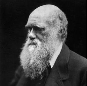 Encyclopédie environnement - Darwin - couverture