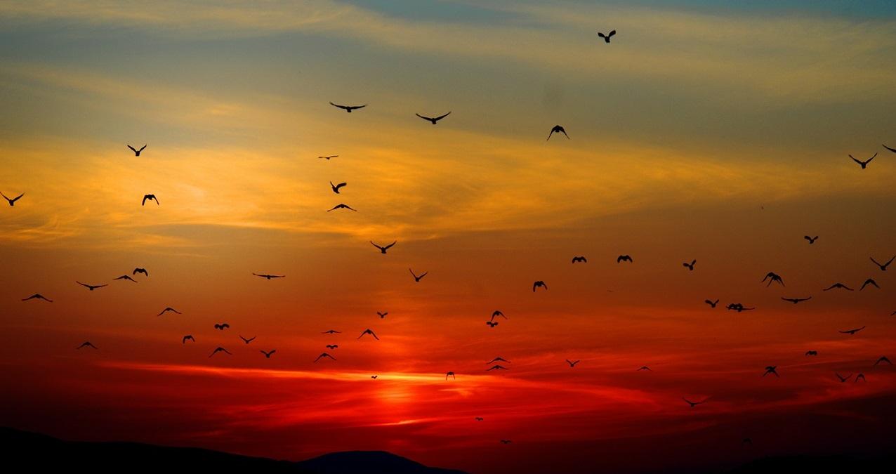 Encyclopédie environnement - couleur du ciel - colors sky