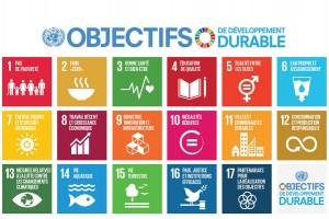 Encyclopédie environnement - développement durable - 17 objectifs de développement durable - 17 sustainable development goals