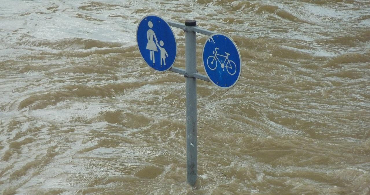 Encyclopédie environnement - catastrophes naturelles - natural disasters
