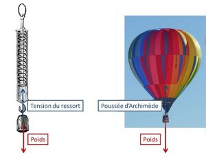 Encyclopedie environnement - dynamique - Equilibres de forces opposees - equilibria of oppposite forces