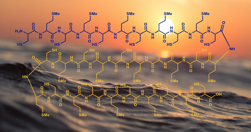 Encyclopedie environnement - origine vie océan - origin life oceans