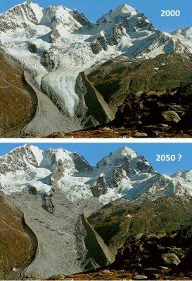环境百科全书-冰川-Tschierva冰川预测