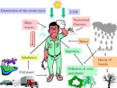 环境百科全书-空气污染-对健康的影响