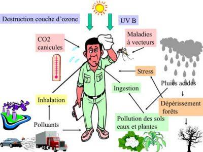 Encyclopédie environnement - pollution atmosphérique air - Les principaux effets de la pollution atmosphérique sur la santé - main health effects air pollution