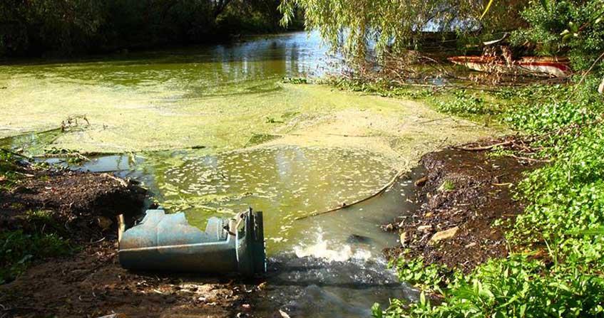 Encyclopédie environnement - pollution phosphore - couverture