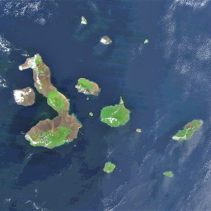 galapagos islands - archipel Galápagos - NASA - radiation adaptative - encyclopedie environnement