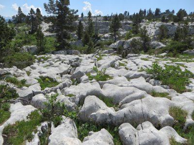 karst - Encyclopedie de l'environnement - Lapiaz du massif du Parmelan (Haute-Savoie)