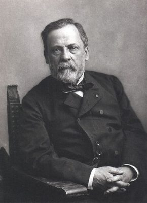 louis pasteur - portrait louis pasteur - pasteur - vaccin - anti vaccin - vaccine - vaccination in france