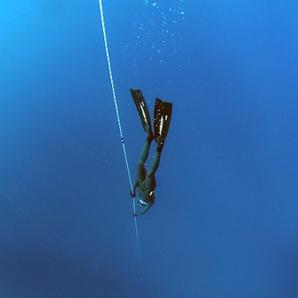plongeur - plongeur pression - plongeur ocean - encyclopedie environnement