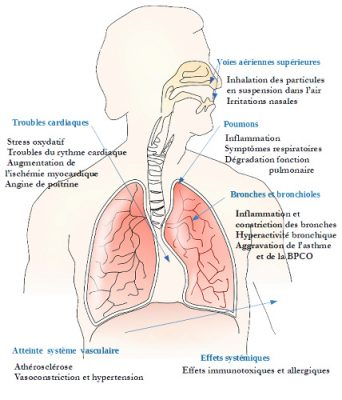 partifcules fines sante - effet pollution sante - effet pollution corps - effet pollution air - pollution air problemes respiratoires - encyclopedie environnement - air quality - health effects fines particules