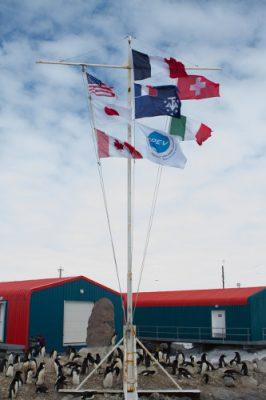 drapeaux station dumont d'urville - terre adelie - antarctique - antarctic treaty