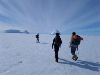 antarctique - antarctica