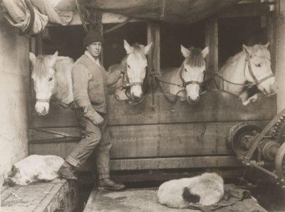 expedition scott pole sud 1911 - pole sud - antarctique - encyclopedie environnement