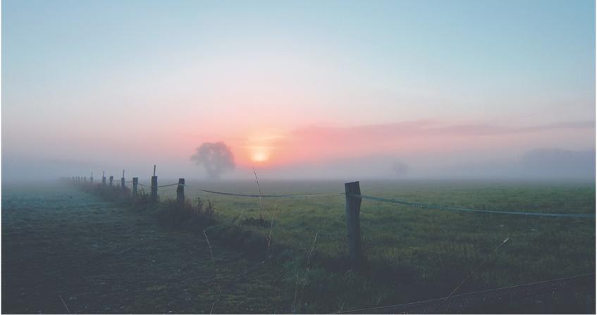 lever soleil - encyclopedie environnement - diffusion