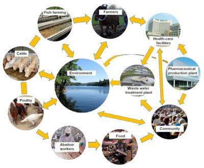 抗生素、耐药细菌及其耐药基因对环境的污染。