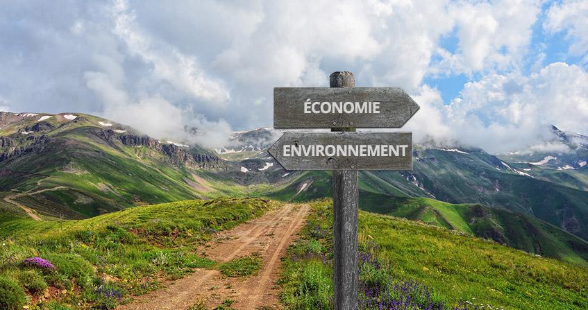 economie environnement theorie