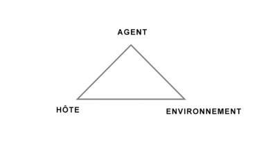 epidemiological triangle agent-host-environment
