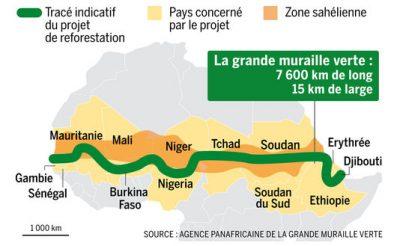 grande muraille verte panafricaine - grande muraille verte afrique