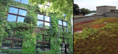 green wall - green roof - biodiversity city