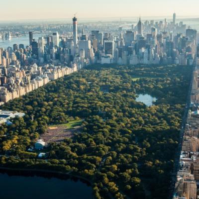 urban ecosystem - biodiversity city