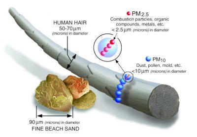 环境百科全书-空气中的颗粒物-细颗粒