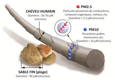 taille particule air - particule air pollution - schema particule pollution