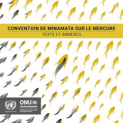 convention minamata - textes convention de minamata