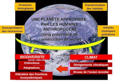 changement climatique - rechauffement climatique