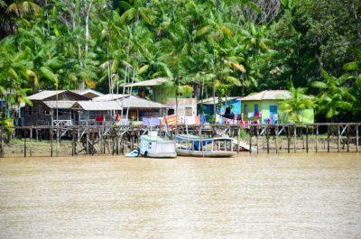 rive amazone - hameau - amazonie