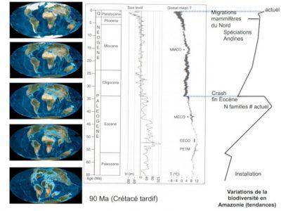 biodiversite amazonie - amazonie