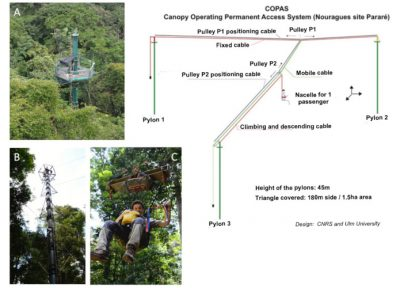COPAS - Canopy observatory permanent access