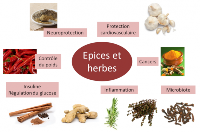 epices - herbes - prevention pathologies - spices - herbs