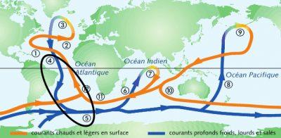 circulation oceanique - gulf stream sud groenland