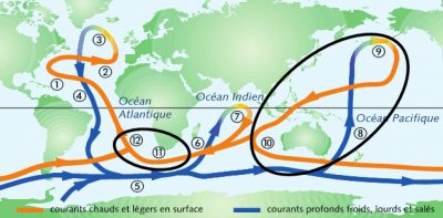 circulation oceanique - gulf stream - carte circulation oceanique