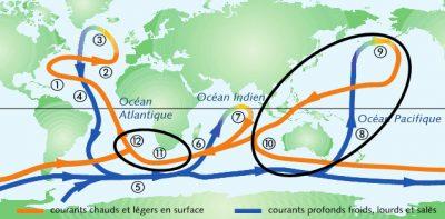 circulation oceanique - gulf stream - carte circulation oceanique