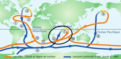 circulation oceanique - circulation thermohaline - courant mozambique - ocean indien