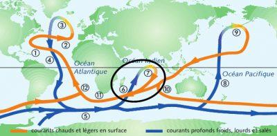circulation oceanique - circulation thermohaline - courant mozambique - ocean indien