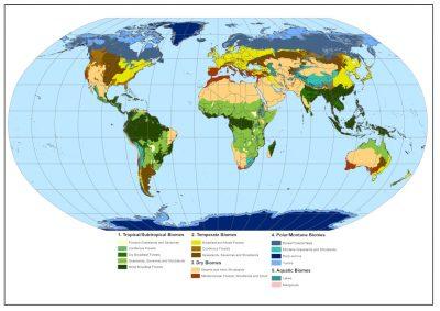 biomes - biomes terrestres - carte biomes terrestres - carte biomes monde