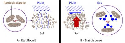 effet sodium structure sol