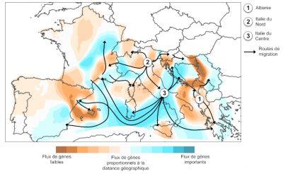 routes migration europe - flux migration europe carte